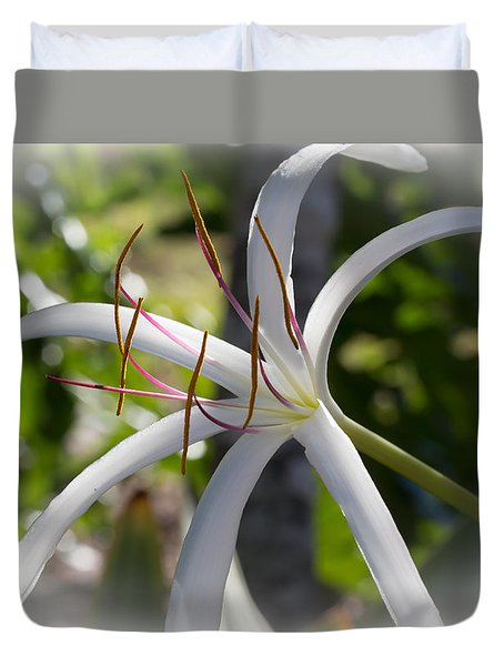 Spider Lilly Flower Duvet Cover