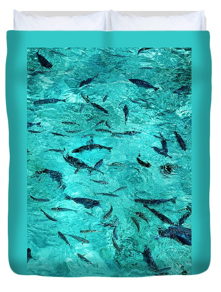 School Of Fishes In The Transparent Water Duvet Cover by Jenny Rainbow