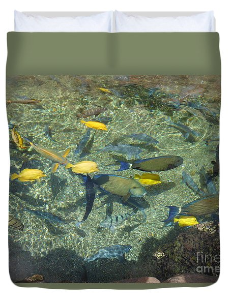 Schools In Session Duvet Cover by Fred Wilson