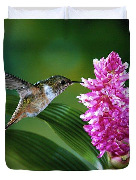 Scintillant Hummingbird Selasphorus Duvet Cover
