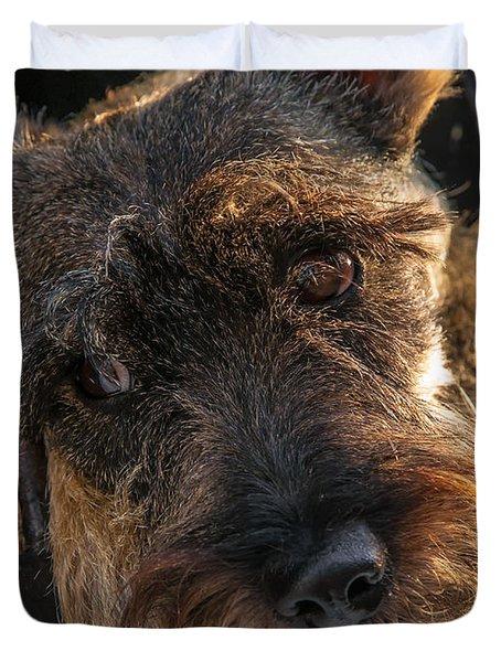 Scottish Terrier Closeup Duvet Cover by Jess Kraft