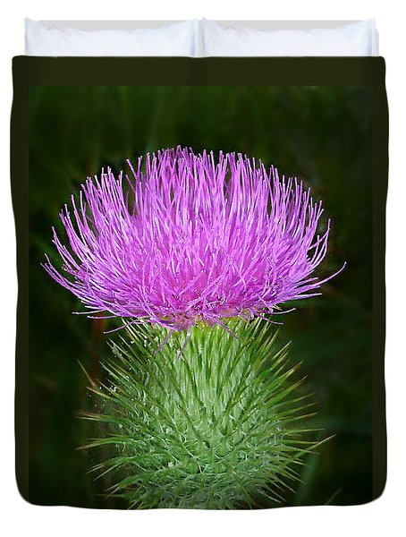 Scottish Thistle  Duvet Cover