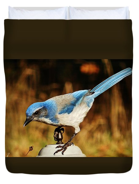 Duvet Cover featuring the photograph Scrub Jay by VLee Watson