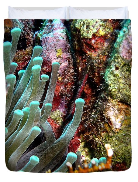 Duvet Cover featuring the photograph Sea Anemone And Coral Rainbow Wall by Amy McDaniel