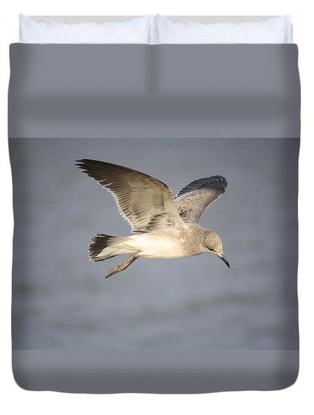 Sea Bird Duvet Cover by Donna G Smith