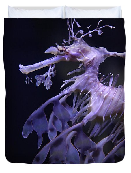 Sea Horse Duvet Cover
