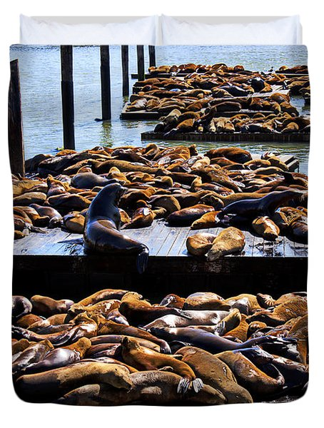 Sea Lions At Pier 39  Duvet Cover