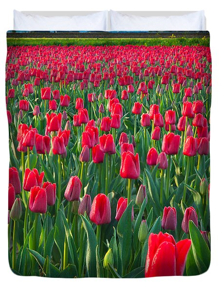 Sea Of Red Tulips Duvet Cover by Inge Johnsson