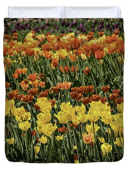 Sea Of Tulips Duvet Cover by LeeAnn McLaneGoetz McLaneGoetzStudioLLCcom