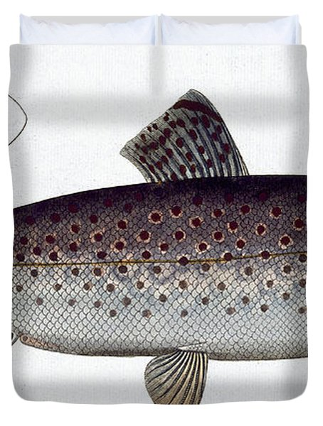 Sea Trout Duvet Cover by Andreas Ludwig Kruger