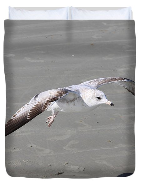 Seagull Duvet Cover by Chris Thomas