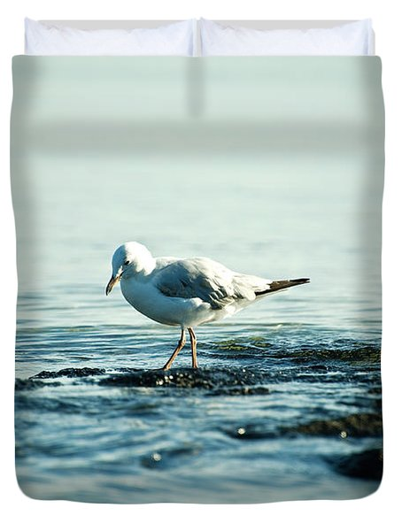Seagull Hunting Duvet Cover by Yew Kwang
