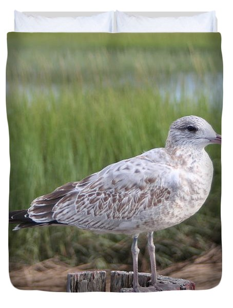Duvet Cover featuring the photograph Seagull by Karen Silvestri