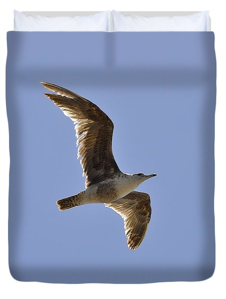 Seagull N Light  Duvet Cover