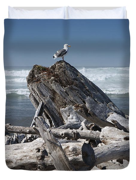 Seagull On Oregon Coast Duvet Cover by Peter French