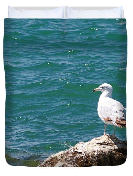 Seagull On Rock Duvet Cover