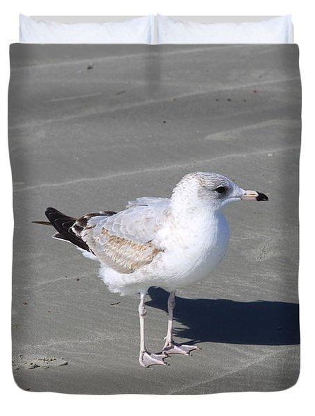 Seagull On The Hunt Duvet Cover by Chris Thomas