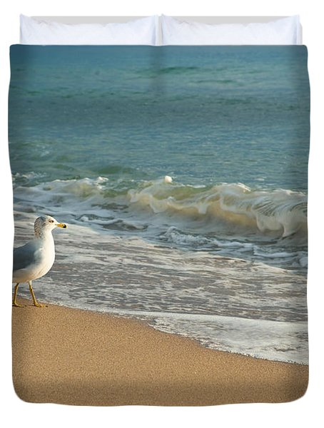Seagull Walking On A Beach Duvet Cover by Sharon Dominick
