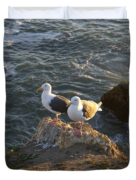 Seagulls Aka Pismo Poopers Duvet Cover by Barbara Snyder