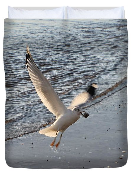 Duvet Cover featuring the photograph Seagull's Prize by Robert Banach
