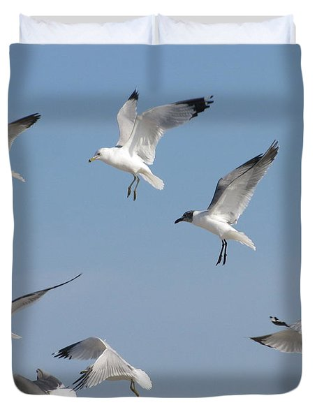 Seagulls See A Cracker Duvet Cover by Ellen Meakin