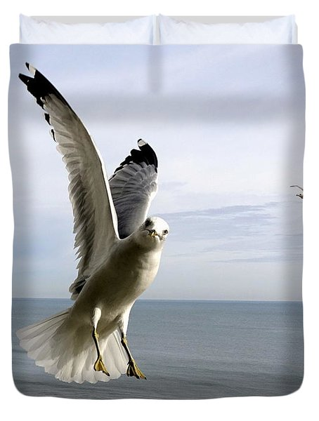 Inquisitive Seagull Duvet Cover