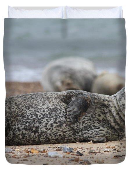 Seal Pup On Beach Duvet Cover by Gordon Auld