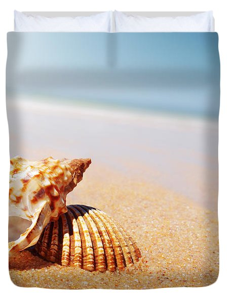Seashell And Conch Duvet Cover by Carlos Caetano