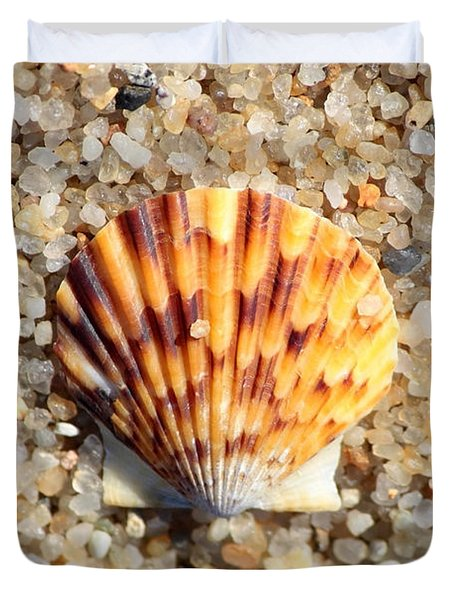 Seashell On Sandy Beach Duvet Cover by Carol Groenen