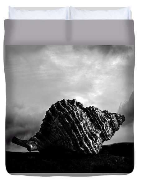 Seashell Without The Sea 2 Duvet Cover by Bob Orsillo