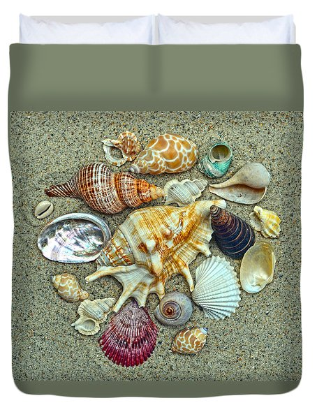 Seashells Collection Duvet Cover by Sandi OReilly