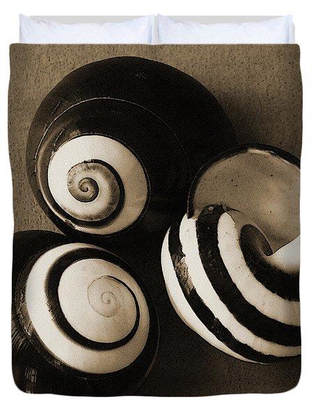 Seashells Spectacular No 27 Duvet Cover