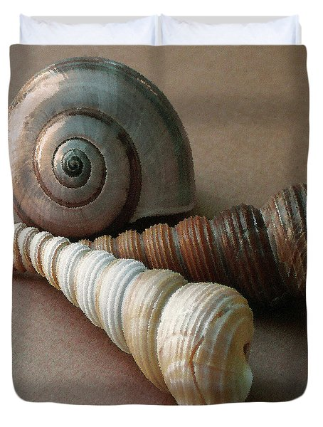 Seashells Spectacular No 29  Duvet Cover