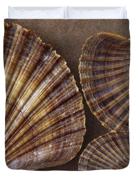 Seashells Spectacular No 7 Duvet Cover