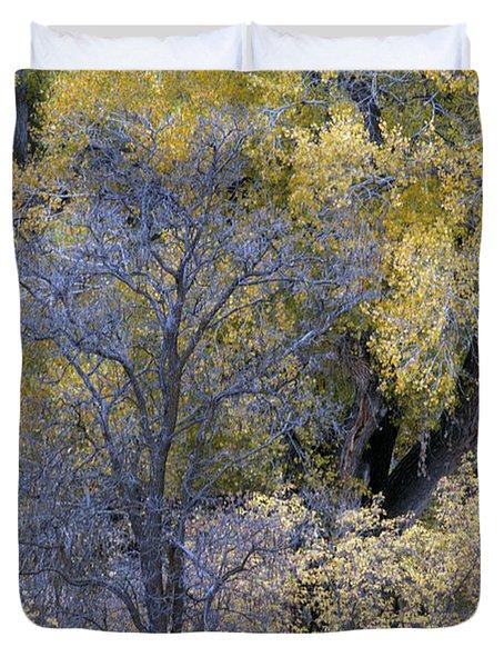Sedona Fall Color Duvet Cover