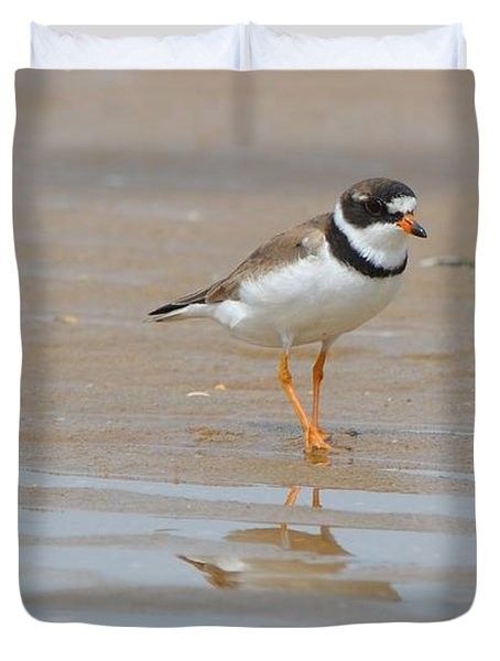 Semipalmated Plover Duvet Cover
