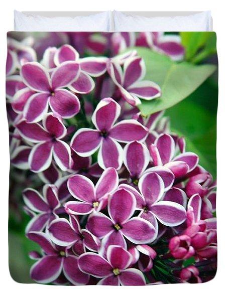 Sensation Lilac Duvet Cover