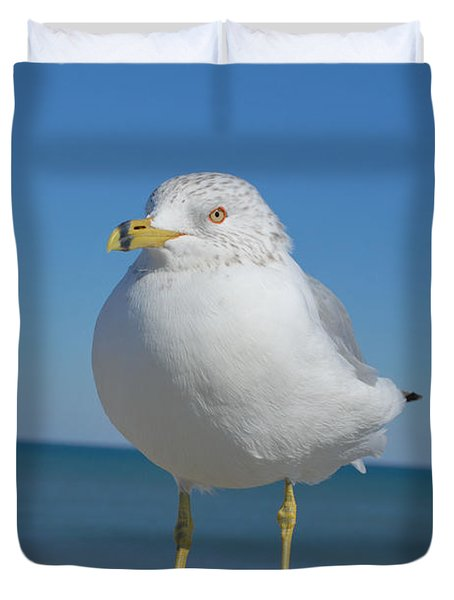 Duvet Cover featuring the photograph Ring-nosed Gull by Bob Sample