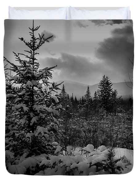 Serenity Duvet Cover by David Rucker