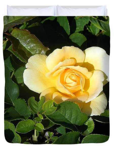 Shadowed Yellow Rose Duvet Cover