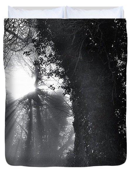 Shafts Of Light Duvet Cover
