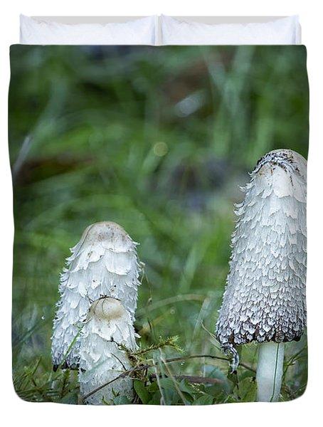 Shaggy Cap Mushroom No. 3 Duvet Cover