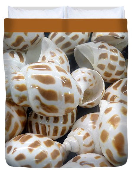 Shells - 7 Duvet Cover