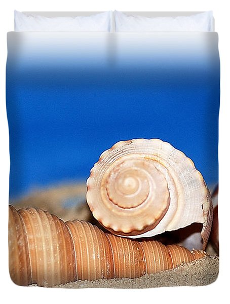 Shells In Sand Duvet Cover by Francie Davis