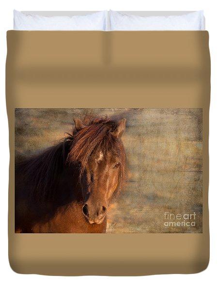 Shetland Pony At Sunset Duvet Cover