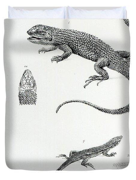 Shingled Iguana Duvet Cover by English School