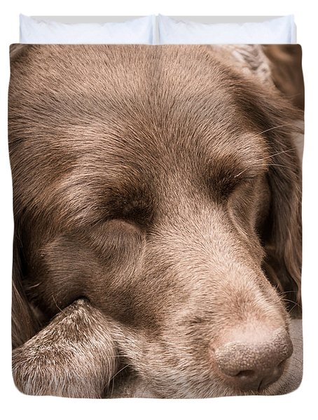 Shishka Dog Dreaming The Day Away Duvet Cover