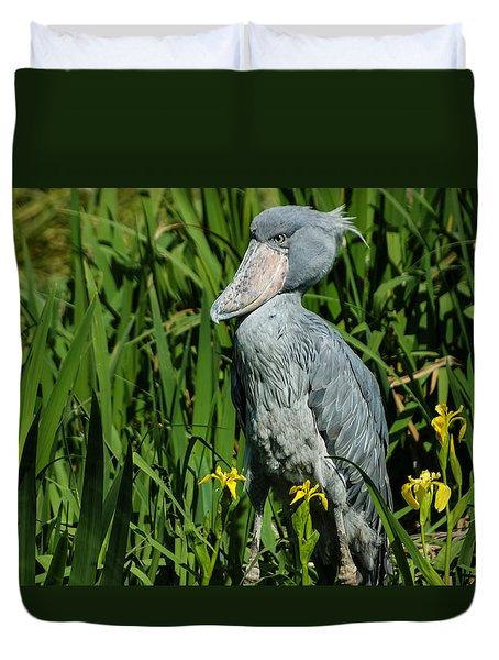 Shoebill Stork Duvet Cover by Georgia Mizuleva