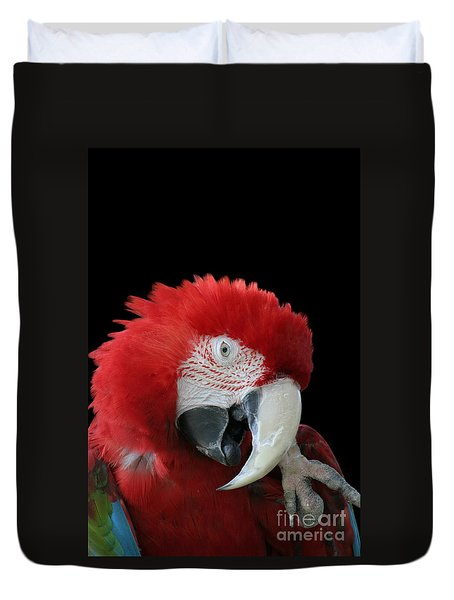 Shy Macaw Duvet Cover