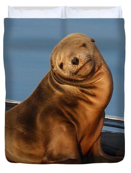 Shy Sea Lion Pup  Duvet Cover